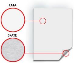 Carton Alfa Print